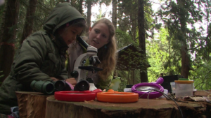 kids-learning-in-the-dirt-forest-schools